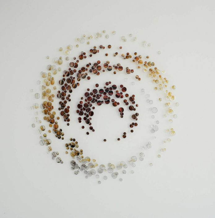 Alan Bur Johnson - Core (SOLD), 2011, 411 photographic transparencies, metal frames, dissection pins, 61 by 59 by 2 inches