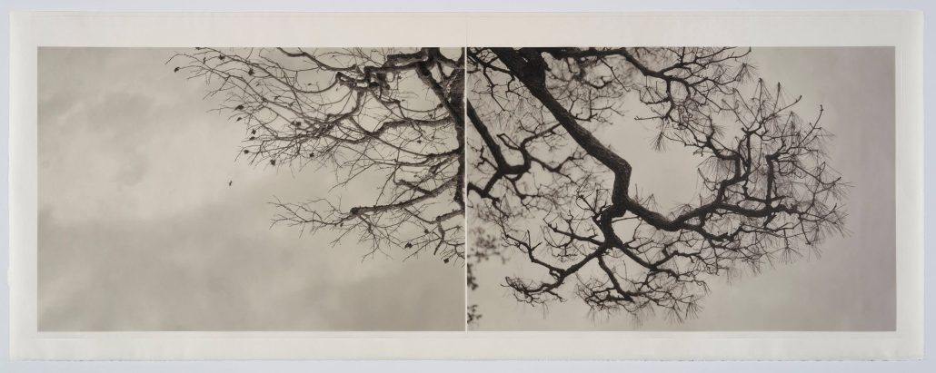 Marie Navarre - learn from the pine (from Basho), 2016, rag paper, Japanese washi, archival digital print on vellum, silk thread, 24.5 by 64 inches