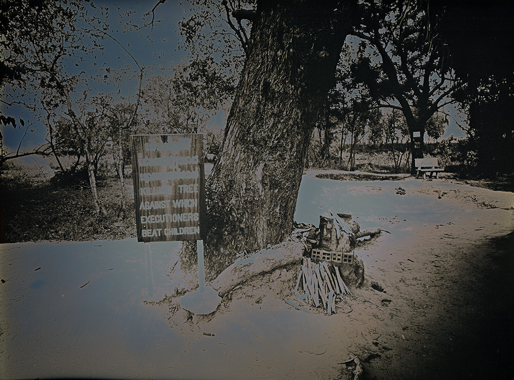 Binh Danh - Killing Tree, Choeung Ek Park, 2017, daguerreotype (exposed from an enlarger), 9 by 12 inches / 12.75 by 15.5 inches framed, edition of 3