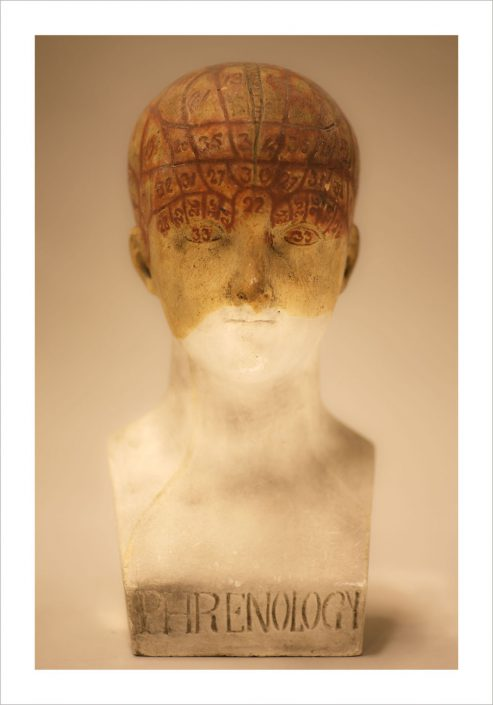 Fiona Pardington - Female Phrenology Head, 2010, archival inkjet print on Hahnemuhle photo rag, 21.6 by 14.4 inches or 41 by 31 inches or 57.5 by 43.3 inches