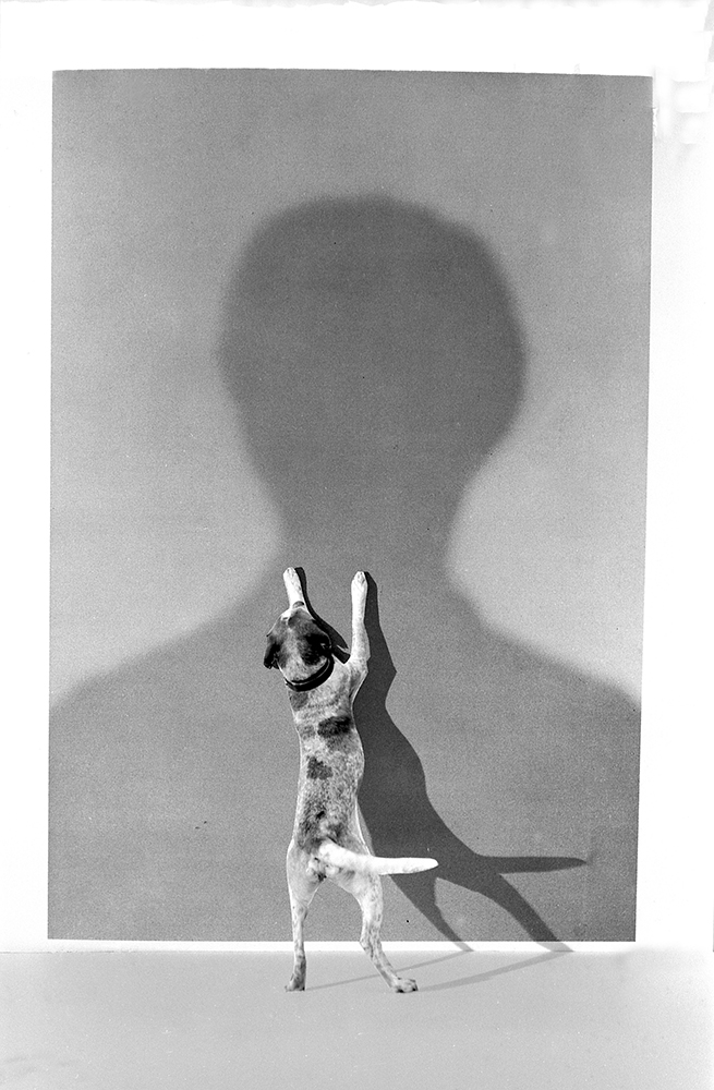 Gilbert Garcin - 32 - L'ombre du maitre (The shadow of the master), 1995, gelatin silver print, 12 by 8 inches, 16 by 12 inches, or 24 by 20 inches