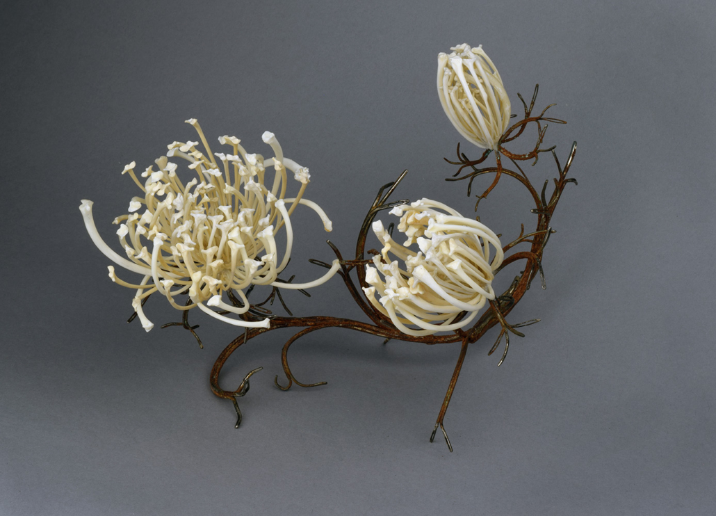 Jennifer Trask - Queen Anne's Lace, 2011, rusted sewing needles, rattlesnake ribs, 10 by 6 by 6 inches