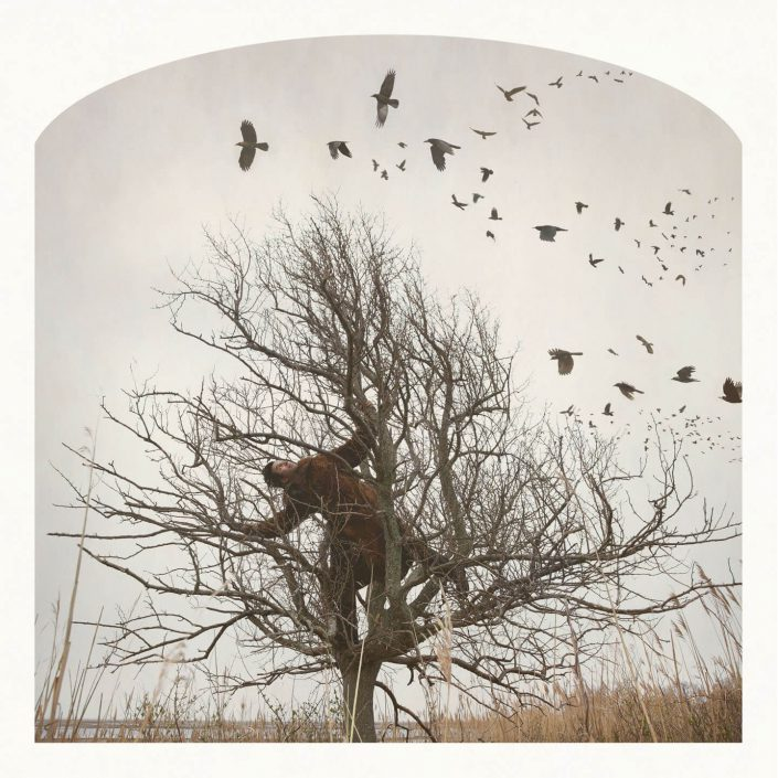 Kahn/Selesnick - by Tree, 2012, archival digital print, 10 x 10 inches, 24 x 24 inches or 30 x 30 inches