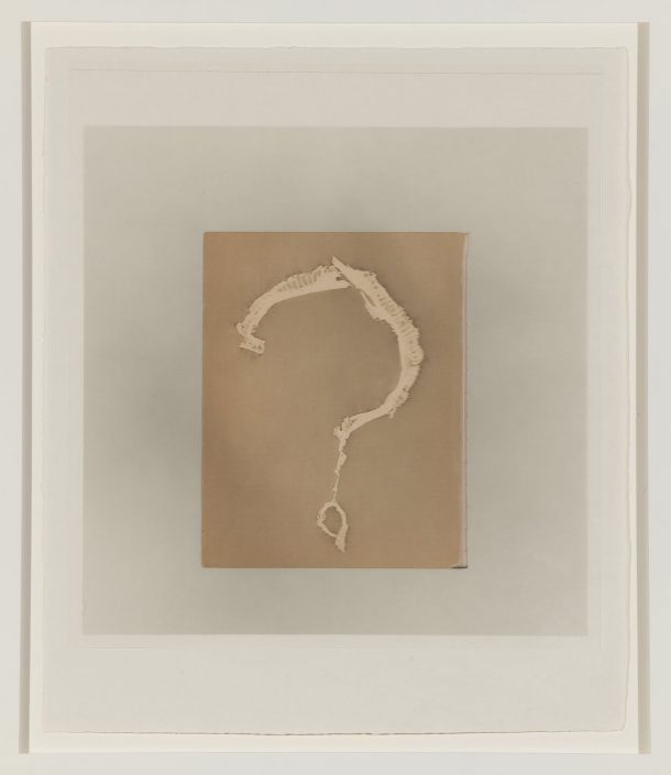 Marie Navarre - I don't know, 2010, film, gampi, rag paper, silk thread, 19 by 16 inches