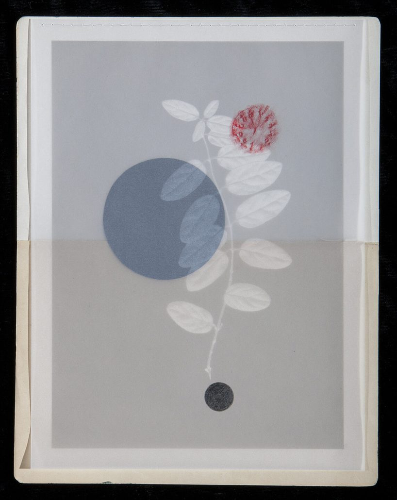 Marie Navarre - Spiral season (SOLD), 2013, found and de-acidifed book pages, rag paper, digital print on vellum with applied colored pencil, silk thread, 11.5 by 9 inches