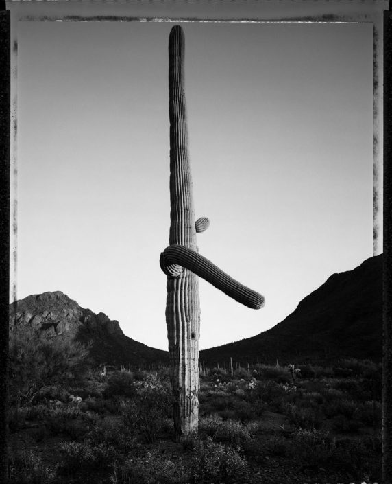 Mark Klett - Desert Citizen 6, 1989-90, gelatin silver print, 20 by 16 inches