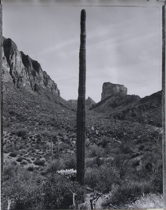 Mark Klett - Desert Citizen No. 4-25-3,1989-90, pigment inkjet print,, 20 by 16 inches