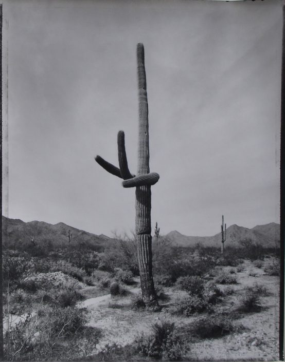 Mark Klett - Desert Citizen 4, 1989-90, gelatin silver print, 20 by 16 inches