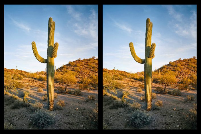 Mark Klett - Two Saguaros Posing as One, 2016, inkjet print with wooden stereo viewer, 35 by 50 inches framed, unique