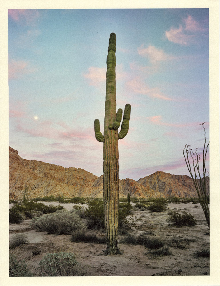 Mark Klett - Color Saguaros (Saguaro dusk red clouds moon CU Mtns), 2020, inkjet prints on Japanese tissue paper, 10.75 x 8.25 inches each