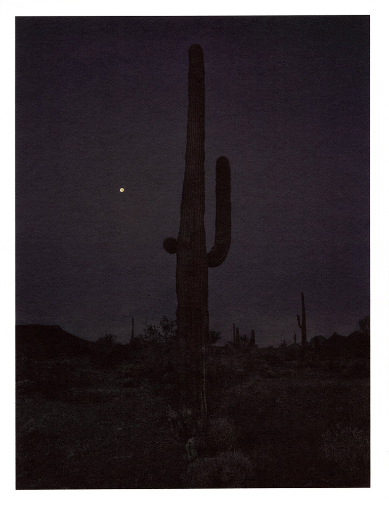 Mark Klett - Color Saguaros (Saguaro in darkness w moon Nov 2018), 2020, inkjet prints on Japanese tissue paper, 10.75 x 8.25 inches each