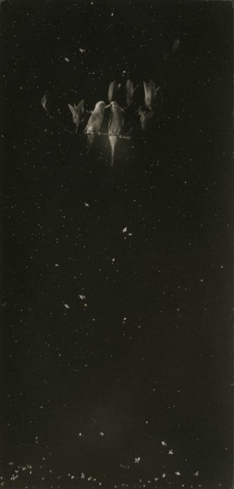 Masao Yamamoto - 46, from Box of Ku, n.d. toned gelatin silver print with mixed media, 6.5 by 3.5 inches