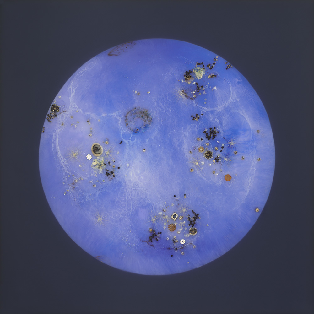 Mayme Kratz - Blue Moon 5, 2020, resin, seeds, bones, shells, Hollyhock blossoms, cicada wings on panel, 36 by 36 inches