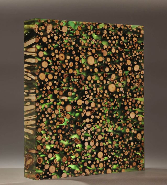 Garden Wall (Cottonwood Study) (SOLD)