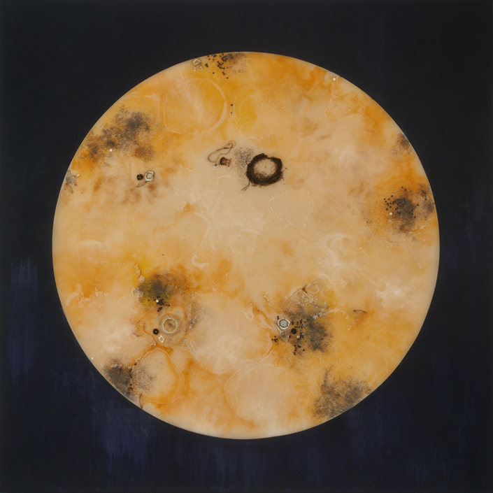Mayme Kratz - Hunger Moon, 2021, resin, moth, snake, sand dollar, cicada wings, deer bones, poppy seeds, hollyhock seeds, anad fish vertebrae on panel, 60 by 60 inches