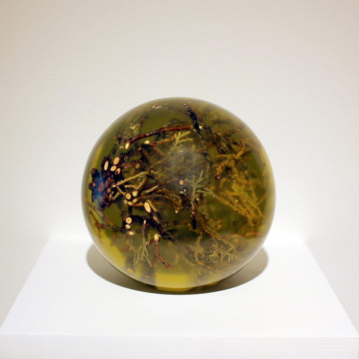 Juniper Sphere