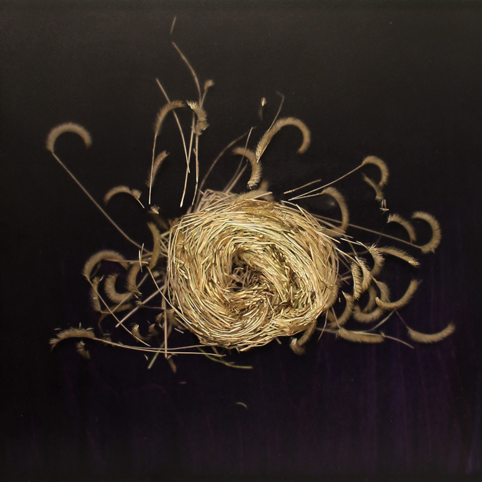 Knot 339