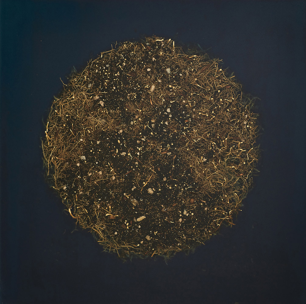 Mayme Kratz - Root Moon 2 (SOLD), 2021, resin and roots on panel, 16 by 16 inches