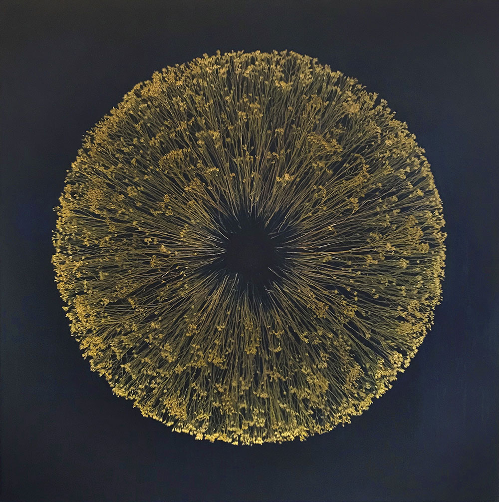 Mayme Kratz - Vanishing Light 17 (SOLD), 2020, resin, snake weed on panel, 36 x 36 inches