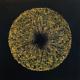 Mayme Kratz - Vanishing Light 17, 2020, resin, snake weed on panel, 36 x 36 inches