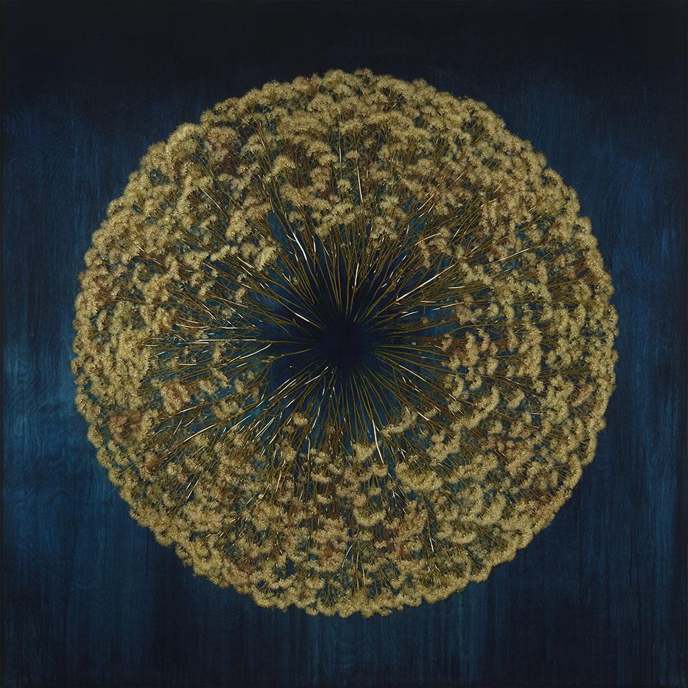 Mayme Kratz - Vanishing Light 19 (SOLD), 2021, resin, rabbit brush on panel, 48 by 48 inches