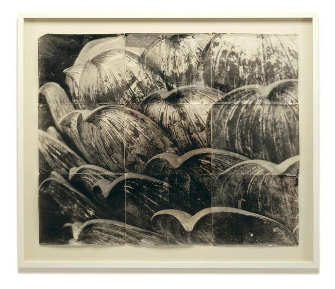Mike & Doug Starn - Segmented Lotus, 1996-2004, Toned silver prints on Thai mulberry paper, 60 by 72 inches, edition of 5