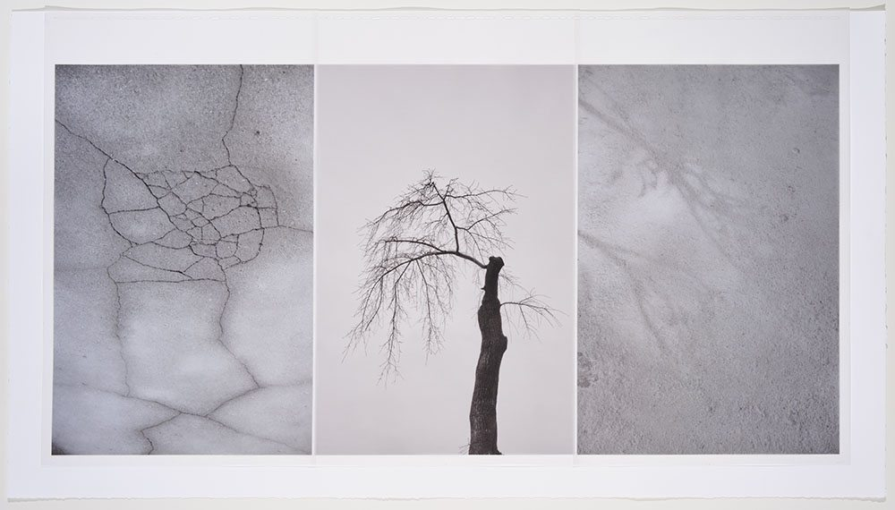 Marie Navarre - broken whole, 2016, rag paper, digital rag paper, digital vellum, silk thread, 24.5 by 42.25 inches framed
