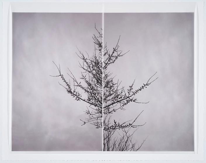 season of longing