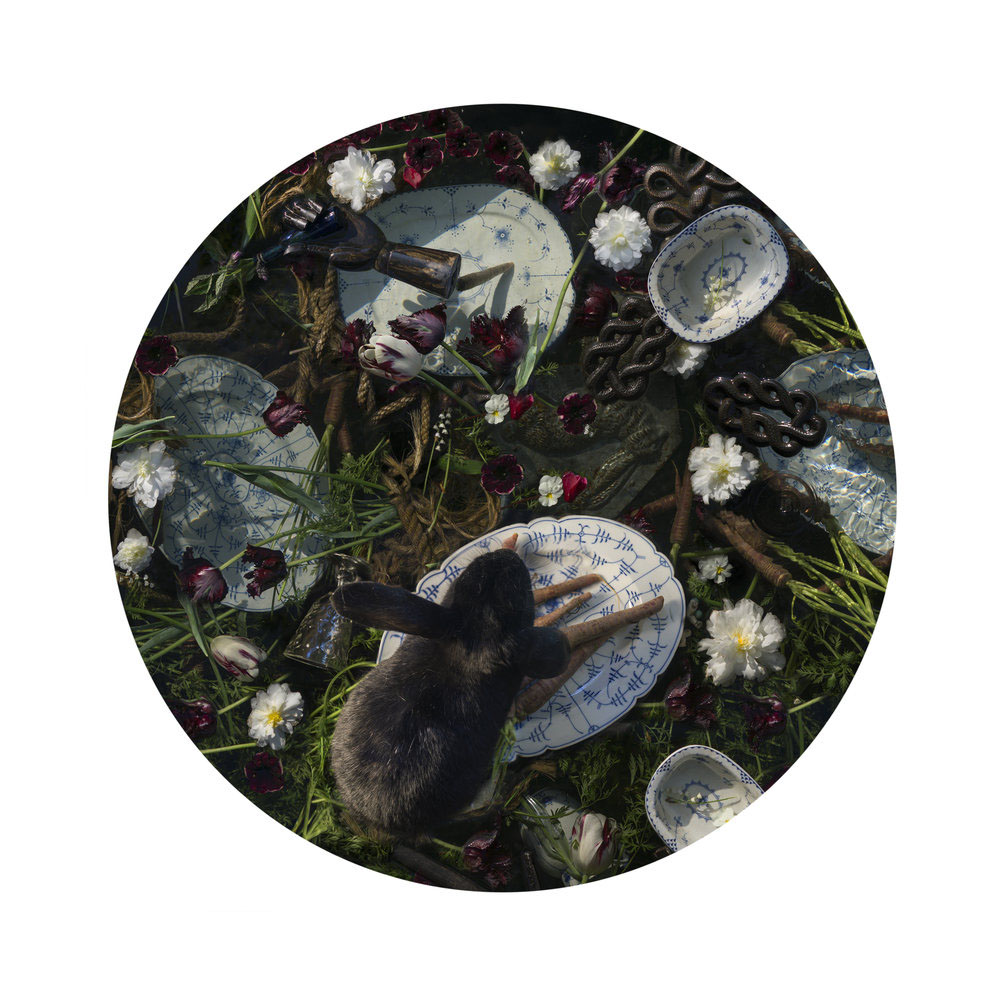 Kahn/Selesnick - Black Rabbit, 2017, archival inkjet print, 10 inch diameter (22 by 17 inch paper size), edition of 5