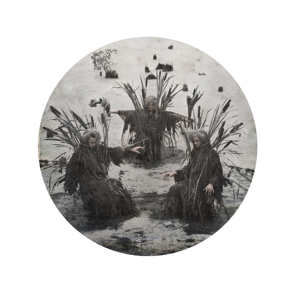 Kahn/Selesnick - Swamp Thing, 2017, archival inkjet print, 10 inch diameter (22 by 17 inch paper size), edition of 5