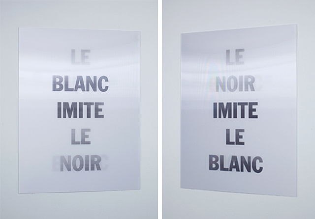 Hank Willis Thomas - Le Blanc Imite Le Noir (shown from two angles)