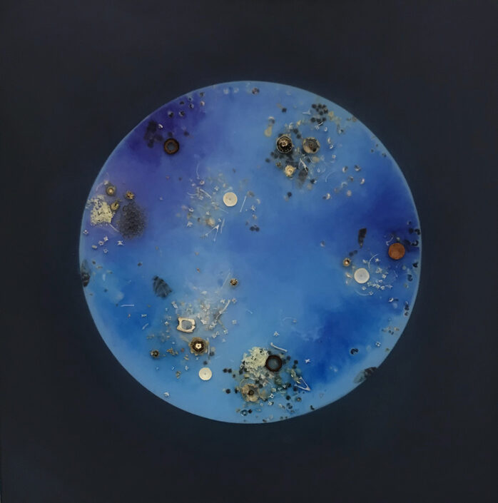Mayme Kratz - Blue Moon 3 (SOLD), 2020, resin, seeds, bones, blossoms, wasp nest, cicada wings on panel, 24 x 24 inches