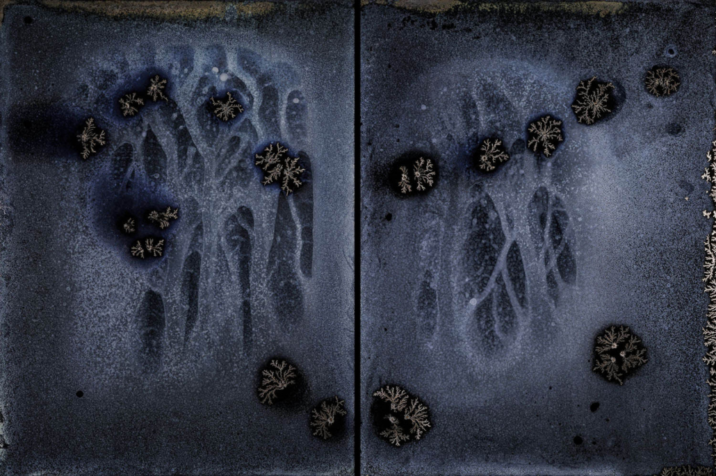 Michael Koerner - DNA #8554L - 8550R, 2019, collodion on tin, 2 plates: 8 by 6 inches each plate, 8 by 12 inches overall
