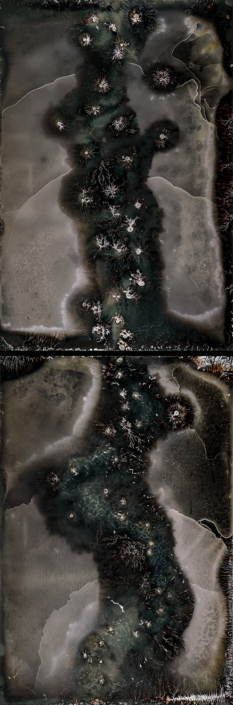 Michael Koerner - The Beast Diagnosis #8950T - #8946B, 2019, collodion on tin, 2 plates: 12 by 8 inches each plate, 24 by 8 inches overall